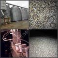 степень зараженности зерна